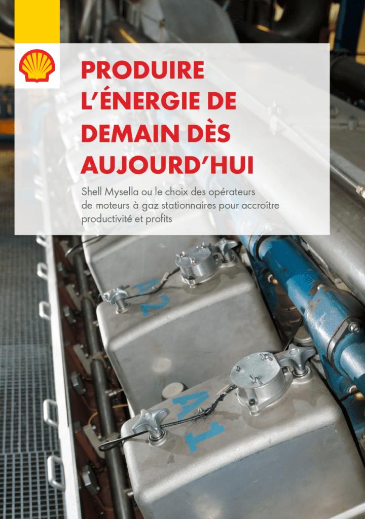 Shell Mysella - French - Maintenance matters
