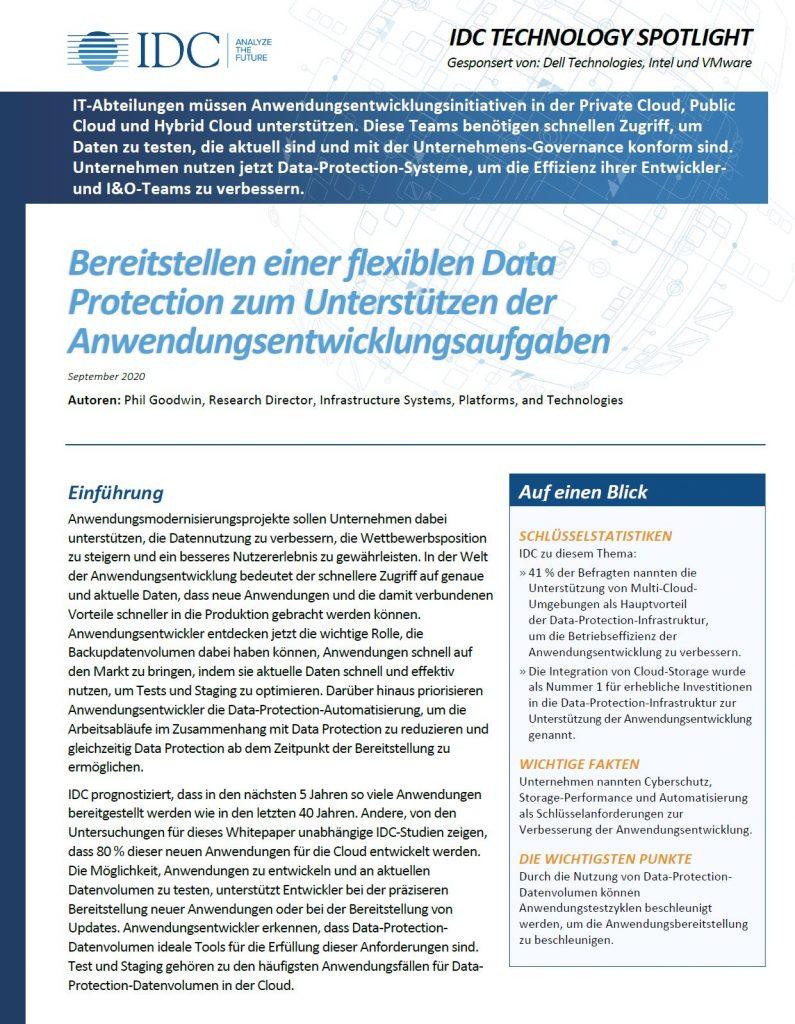 Dell, , Bereitstellen einer flexiblen Data Protection zum Unterstützen der Anwendungsentwicklungsaufgaben